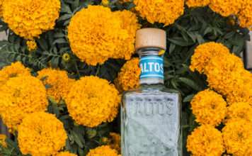 Altos Plata Bottle
