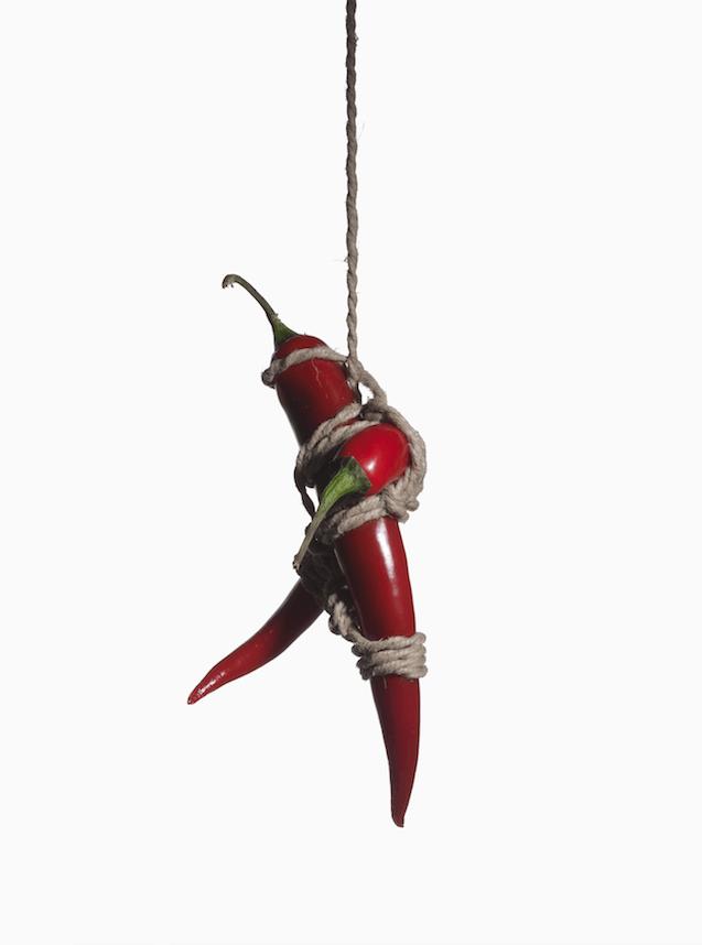 culinaria, il gusto dell'identità, bondage vegetale