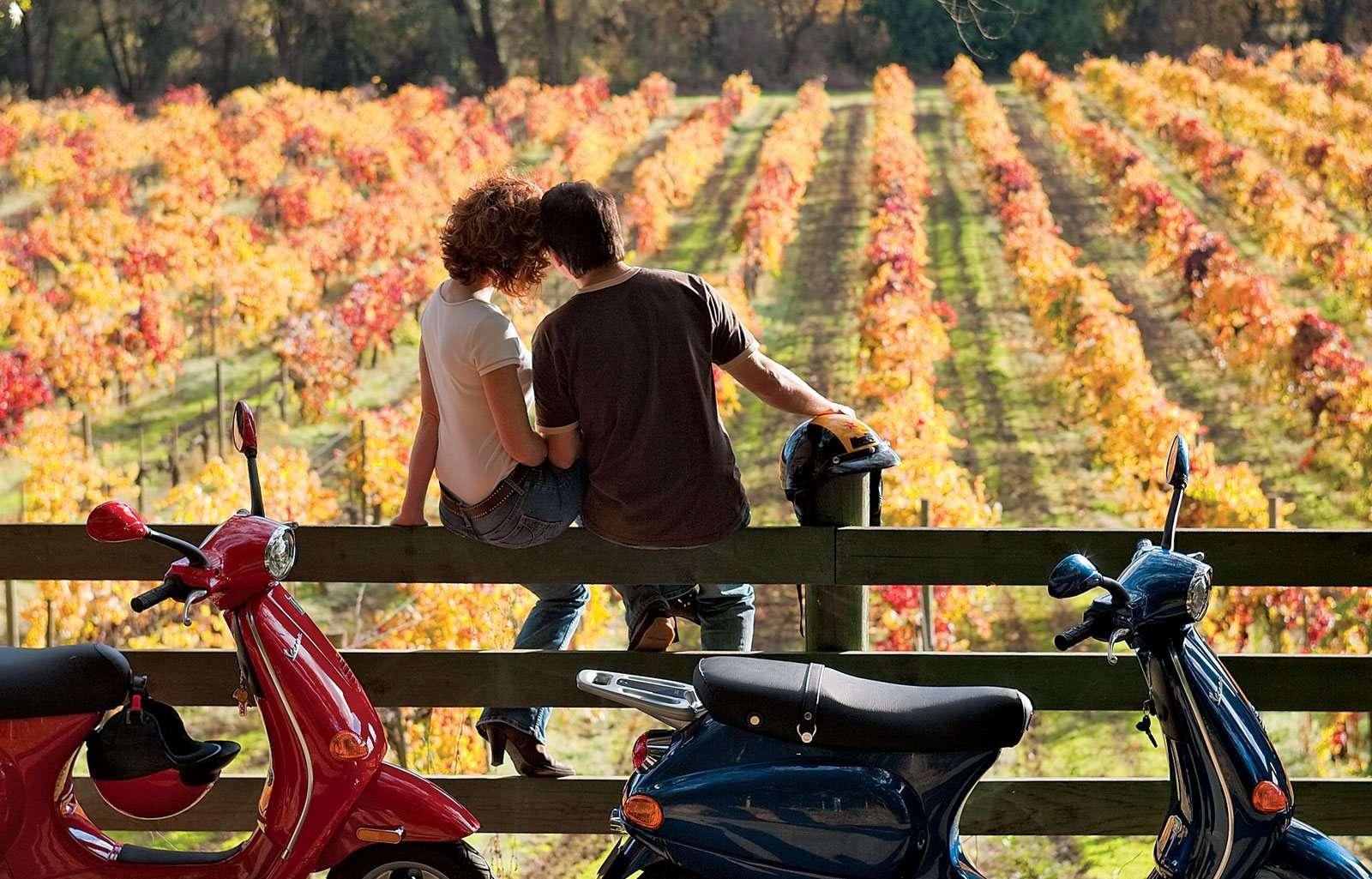 movimento turismo del vino, vino, cantineaperte